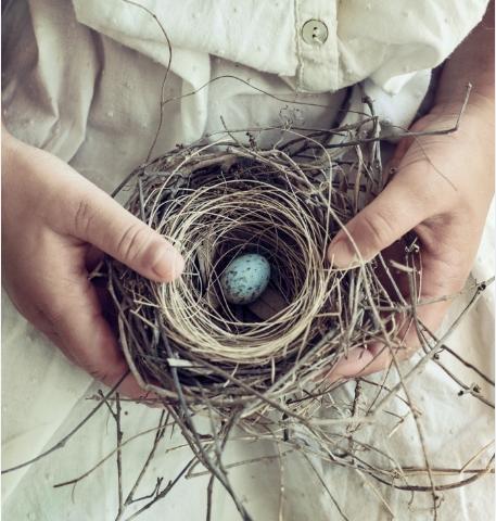 Hniezda zachrany
